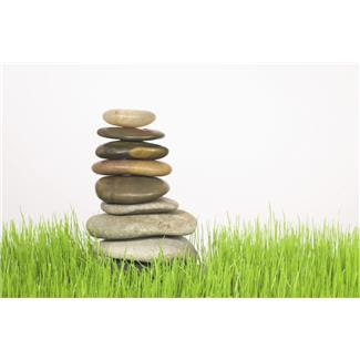 grass+and+stones.JPG