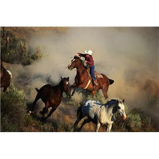 cowboy1.JPG