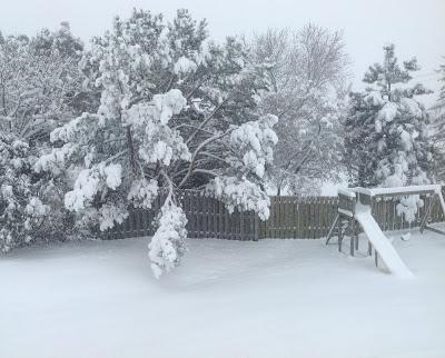 snow+cropped.jpg